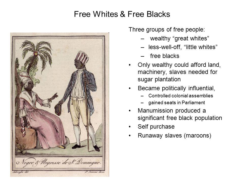 Free Whites & Free Blacks