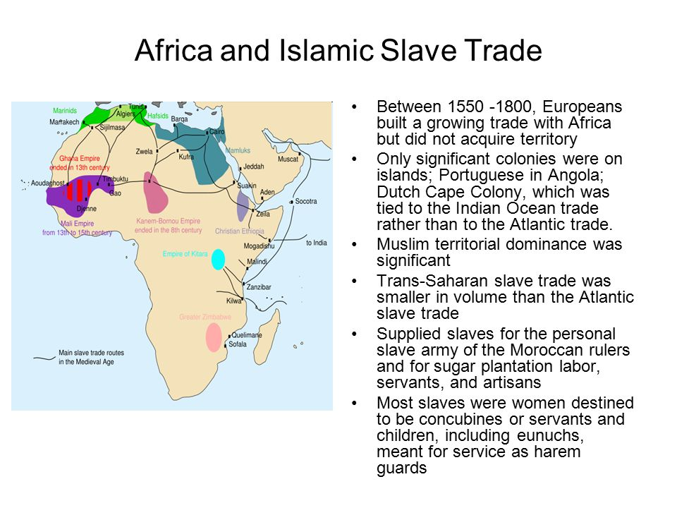 Africa and Islamic Slave Trade
