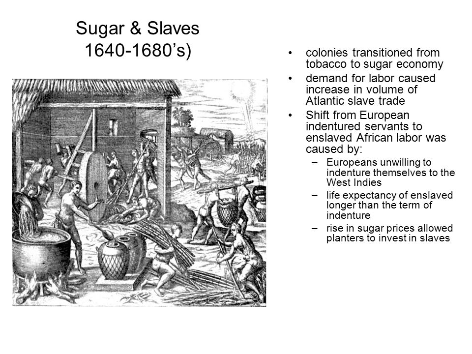 Sugar & Slaves 1640-1680's) colonies transitioned from tobacco to sugar economy. demand for labor caused increase in volume of Atlantic slave trade.