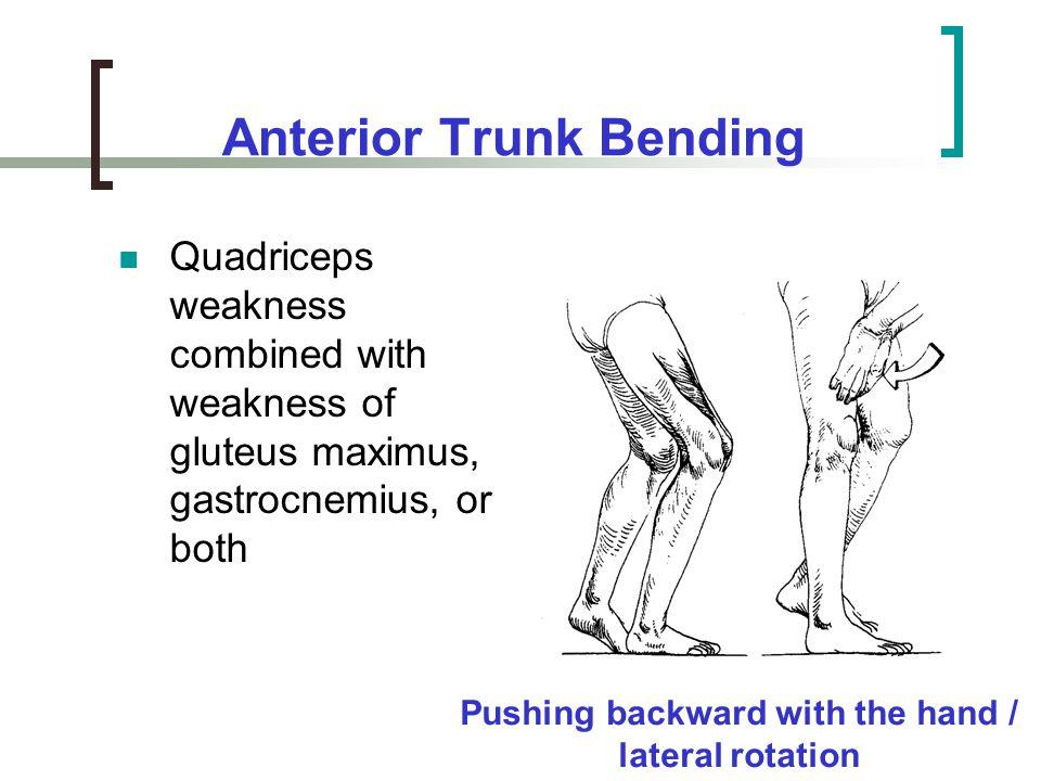 Anterior Trunk Bending