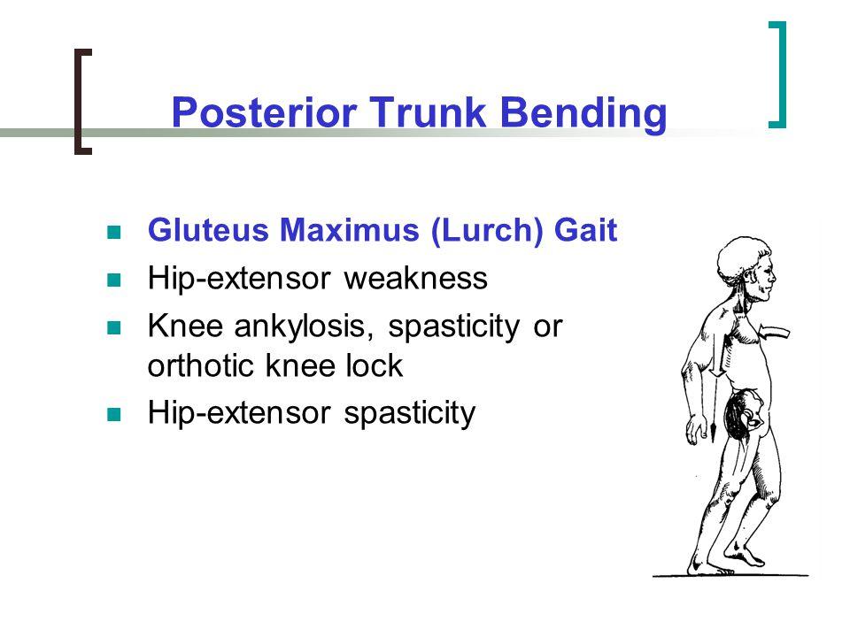 Posterior Trunk Bending