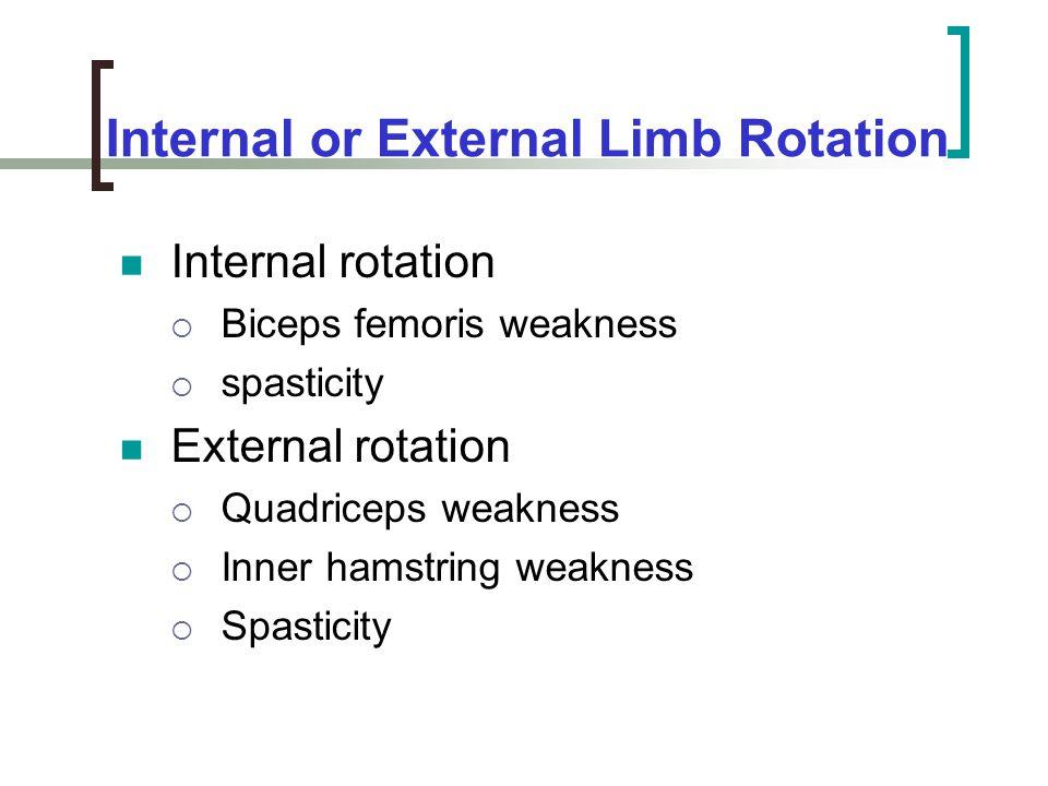 Internal or External Limb Rotation