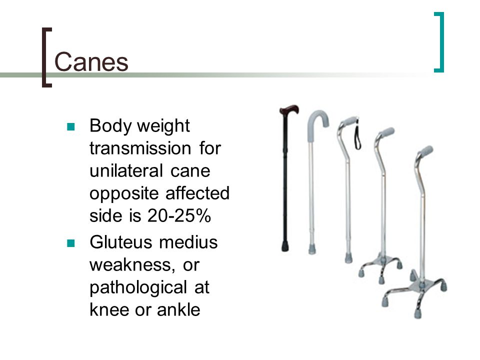 Canes Body weight transmission for unilateral cane opposite affected side is 20-25% Gluteus medius weakness, or pathological at knee or ankle.