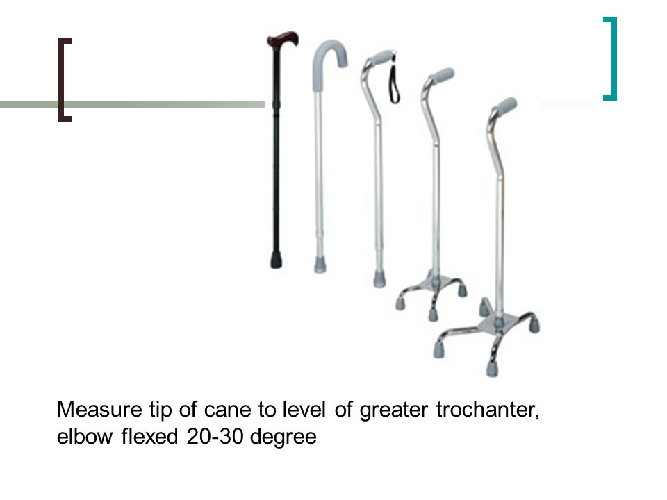 Measure tip of cane to level of greater trochanter,