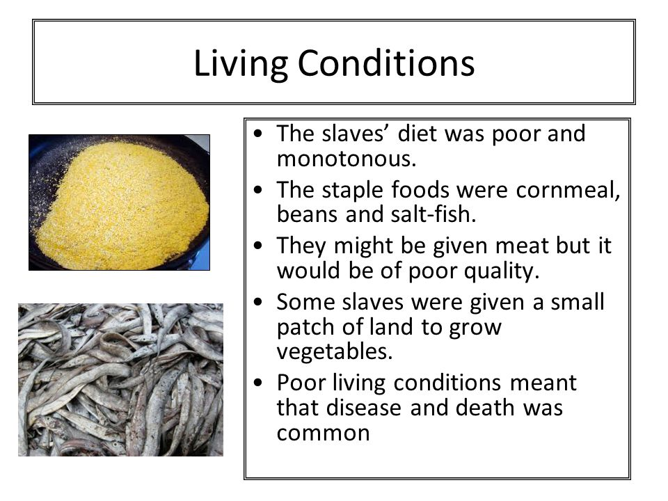 Living Conditions The slaves' diet was poor and monotonous.
