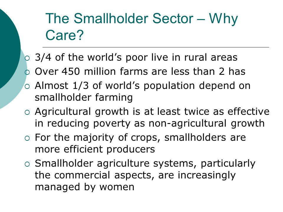 The Smallholder Sector – Why Care
