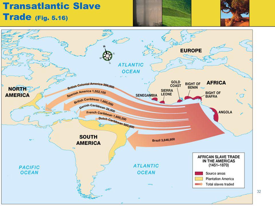 Transatlantic Slave Trade (Fig. 5.16)
