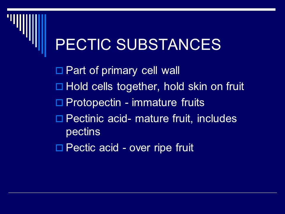 PECTIC SUBSTANCES Part of primary cell wall