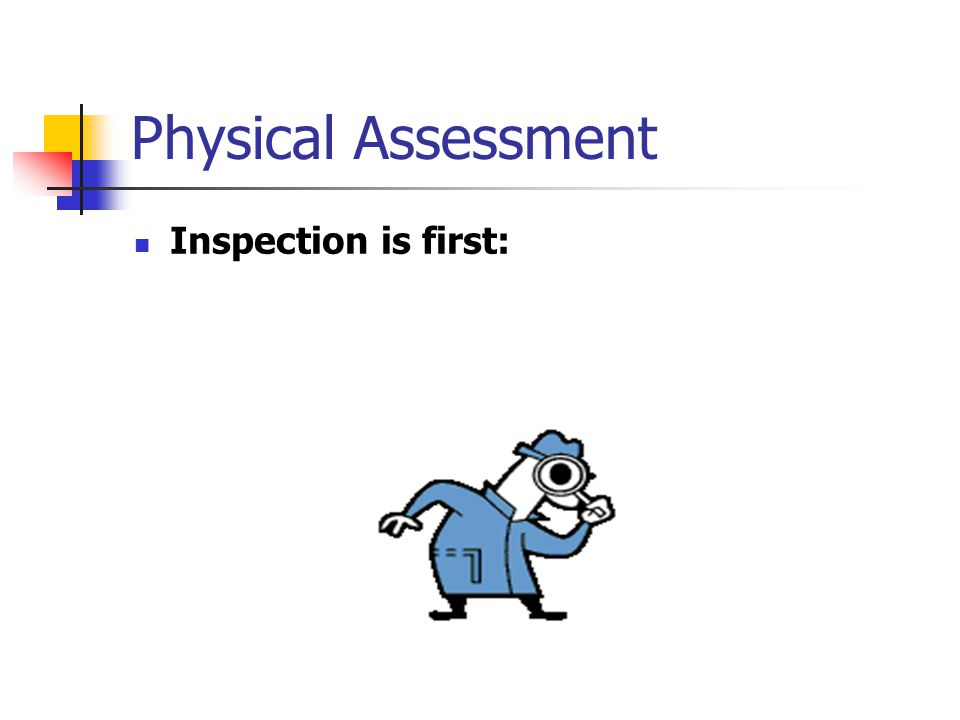 Physical Assessment Inspection is first:
