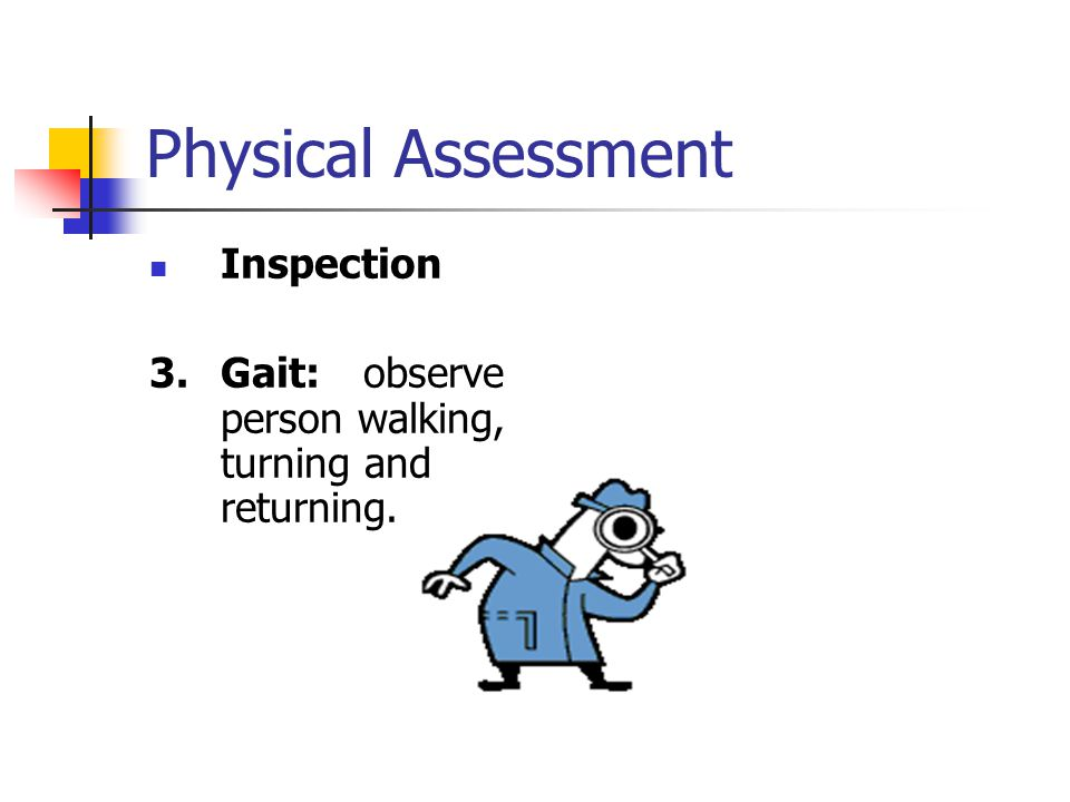 Physical Assessment Inspection