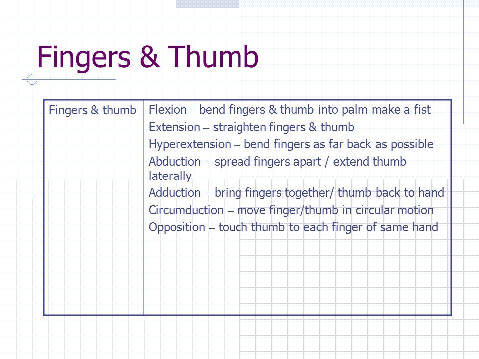Fingers & Thumb Fingers & thumb