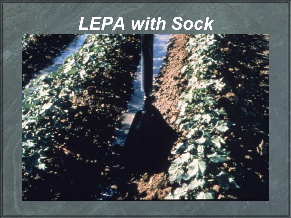 LEPA with Sock