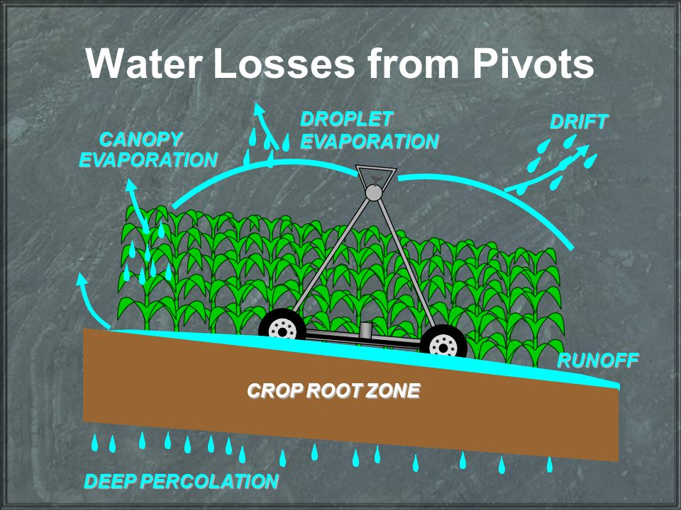 Water Losses from Pivots