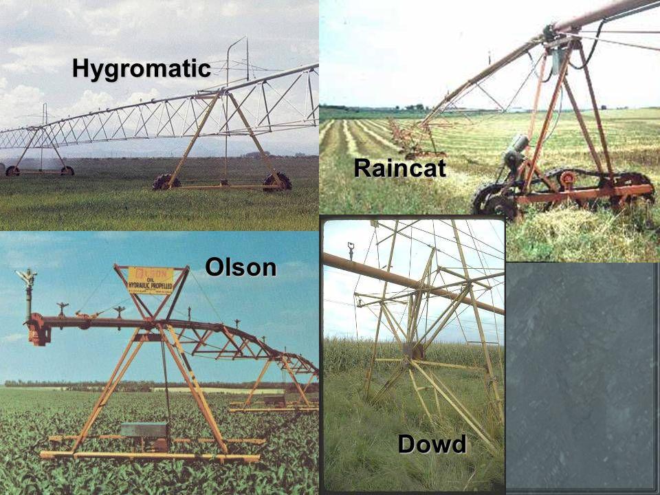 Hygromatic Raincat Olson Dowd
