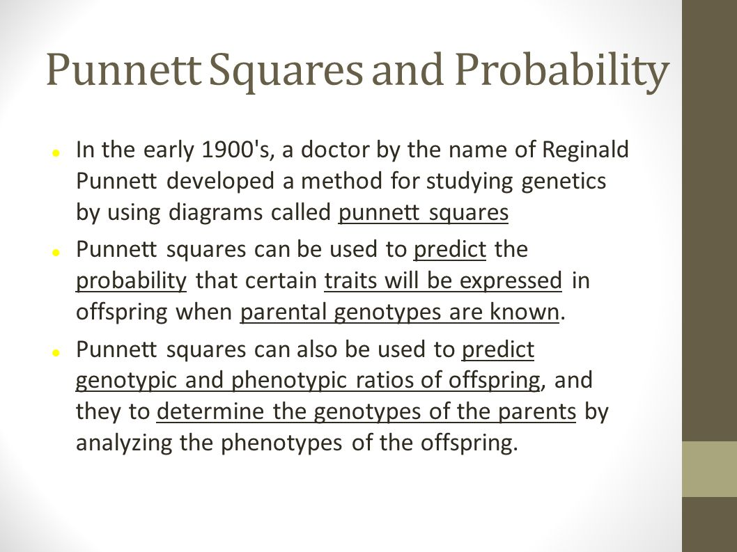 Punnett Squares and Probability