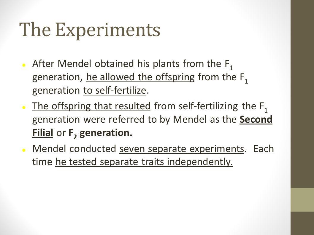 The Experiments After Mendel obtained his plants from the F1 generation, he allowed the offspring from the F1 generation to self-fertilize.