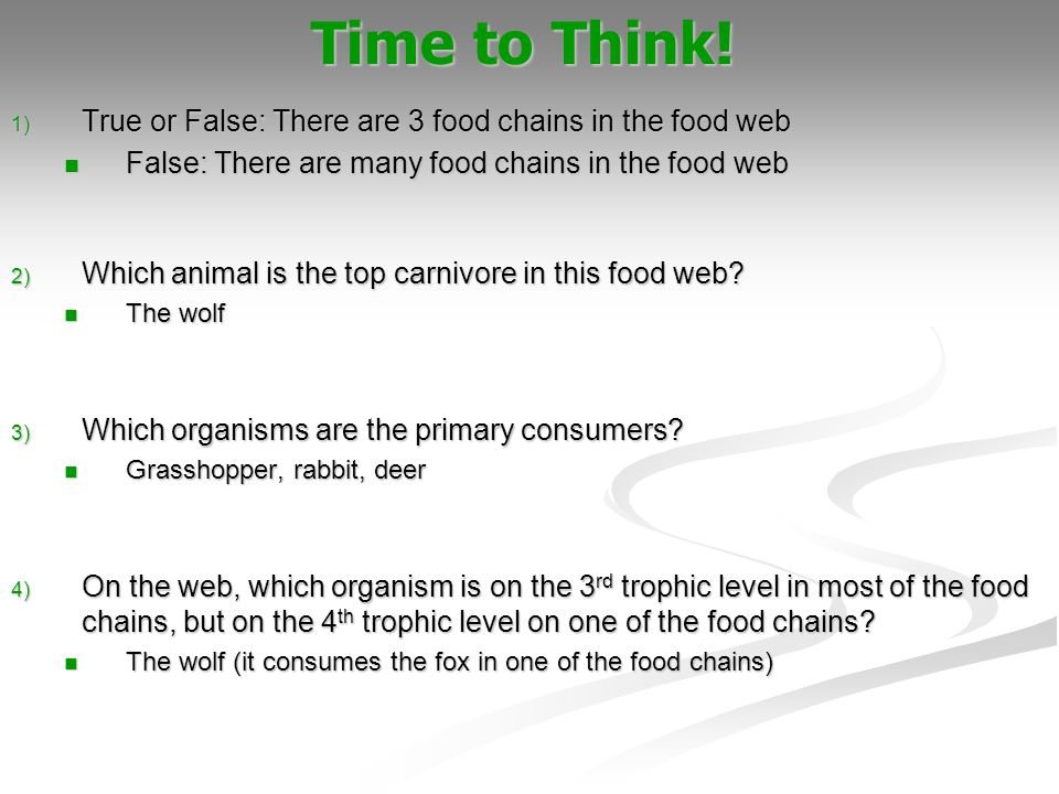 Time to Think! True or False: There are 3 food chains in the food web