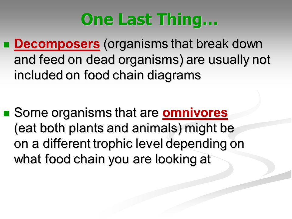 One Last Thing… Decomposers (organisms that break down and feed on dead organisms) are usually not included on food chain diagrams.