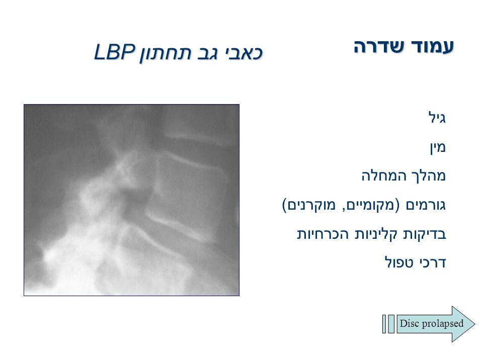 עמוד שדרה כאבי גב תחתון LBP גיל מין מהלך המחלה