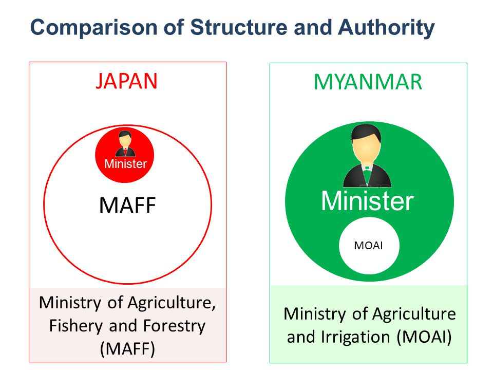 Comparison of Structure and Authority