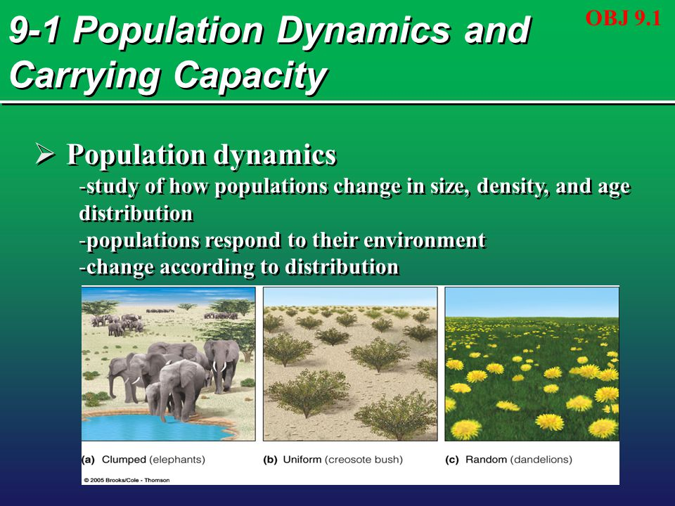 9-1 Population Dynamics and Carrying Capacity