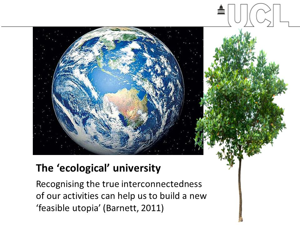 The 'ecological' university
