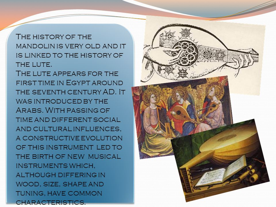 The history of the mandolin is very old and it is linked to the history of the lute.
