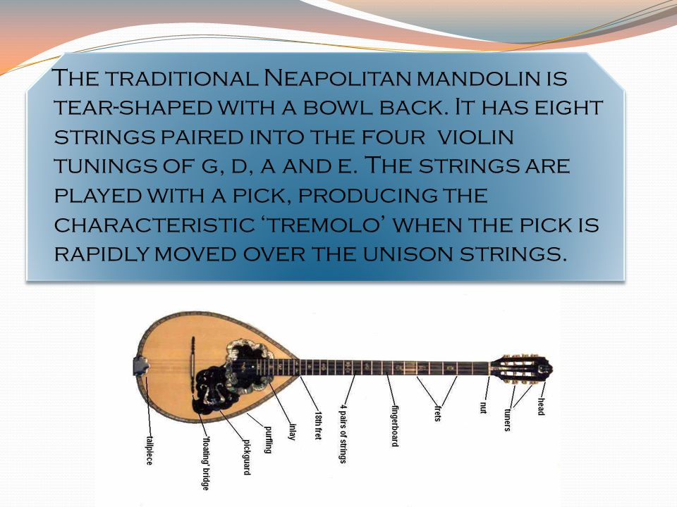 The traditional Neapolitan mandolin is tear-shaped with a bowl back