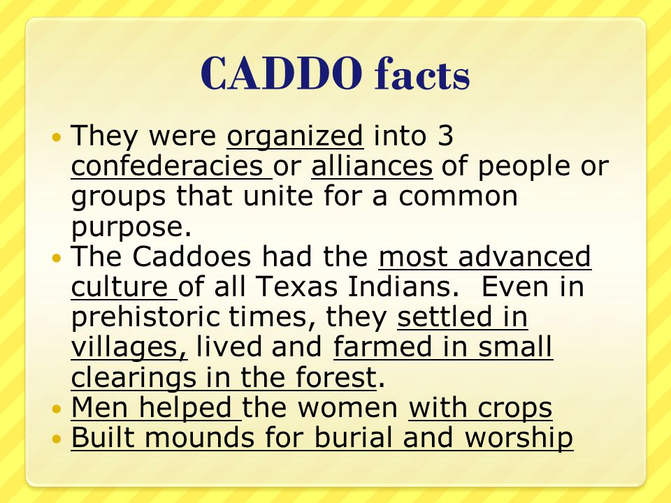 CADDO facts They were organized into 3 confederacies or alliances of people or groups that unite for a common purpose.