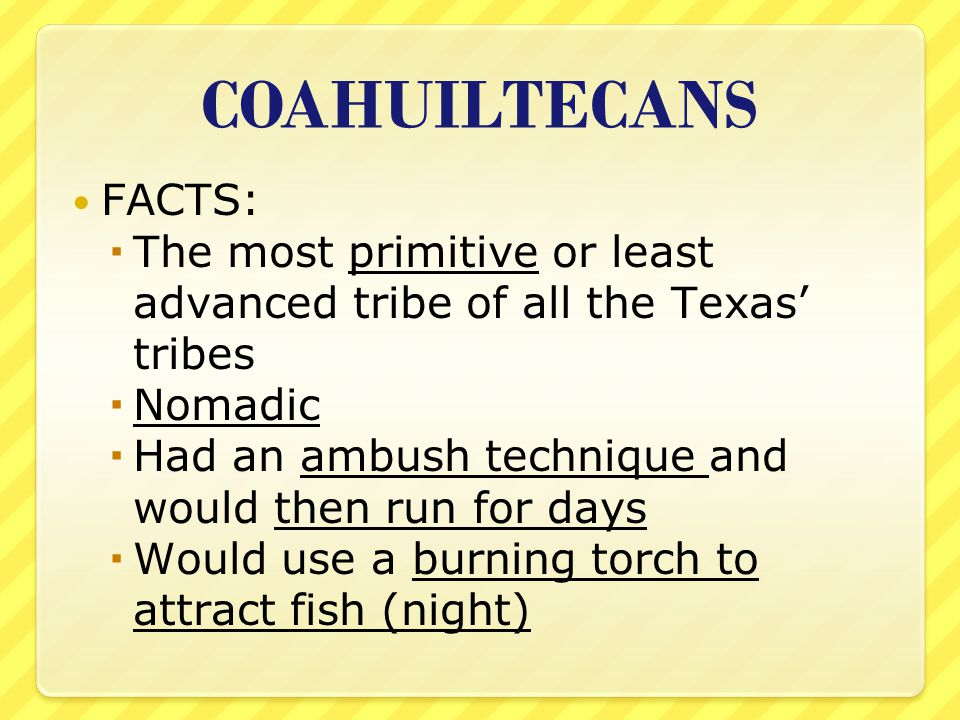 COAHUILTECANS FACTS: The most primitive or least advanced tribe of all the Texas' tribes. Nomadic.