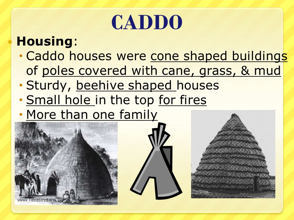 CADDO Housing: Caddo houses were cone shaped buildings of poles covered with cane, grass, & mud. Sturdy, beehive shaped houses.