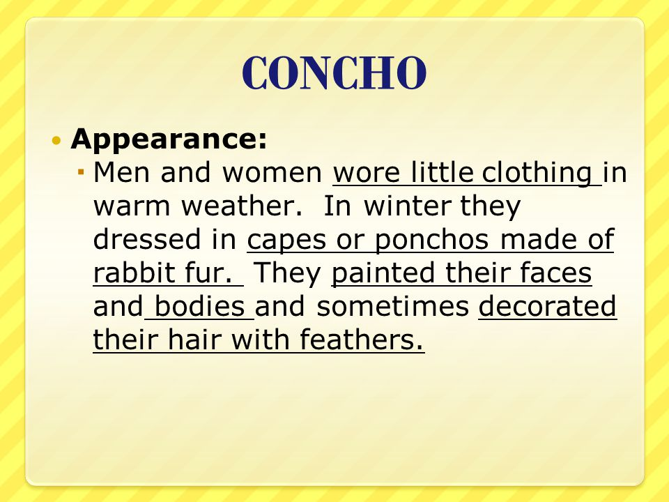 CONCHO Appearance: