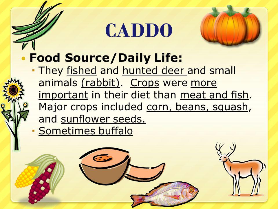 CADDO Food Source/Daily Life: