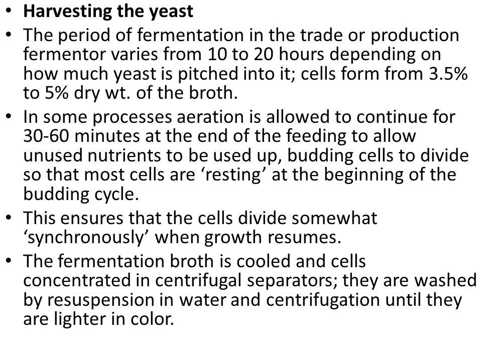 Harvesting the yeast