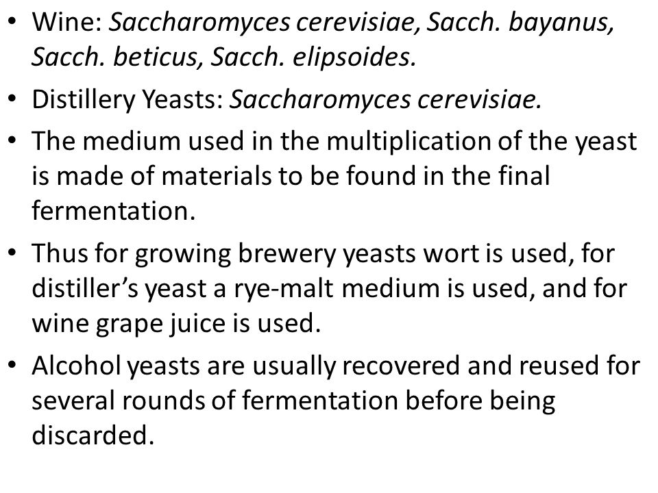 Wine: Saccharomyces cerevisiae, Sacch. bayanus, Sacch. beticus, Sacch