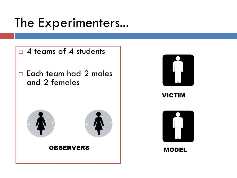The Experimenters... 4 teams of 4 students