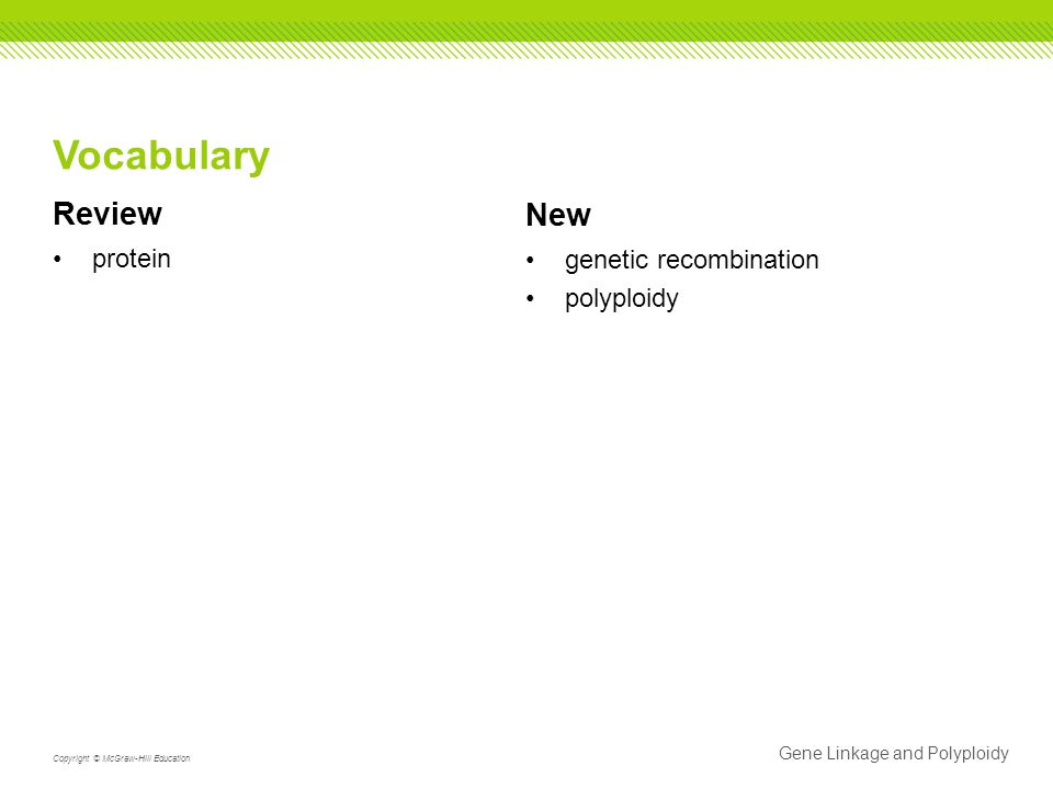 Vocabulary Review New protein genetic recombination polyploidy