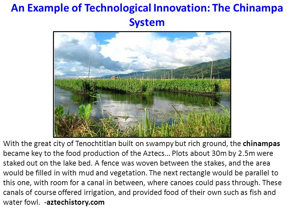 An Example of Technological Innovation: The Chinampa System