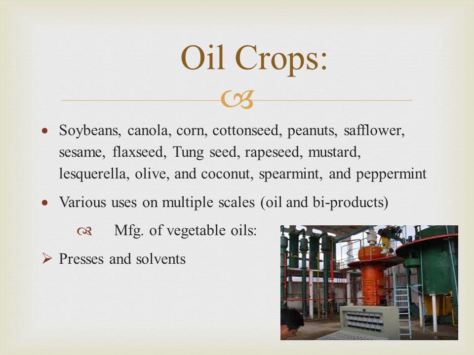 Oil Crops: