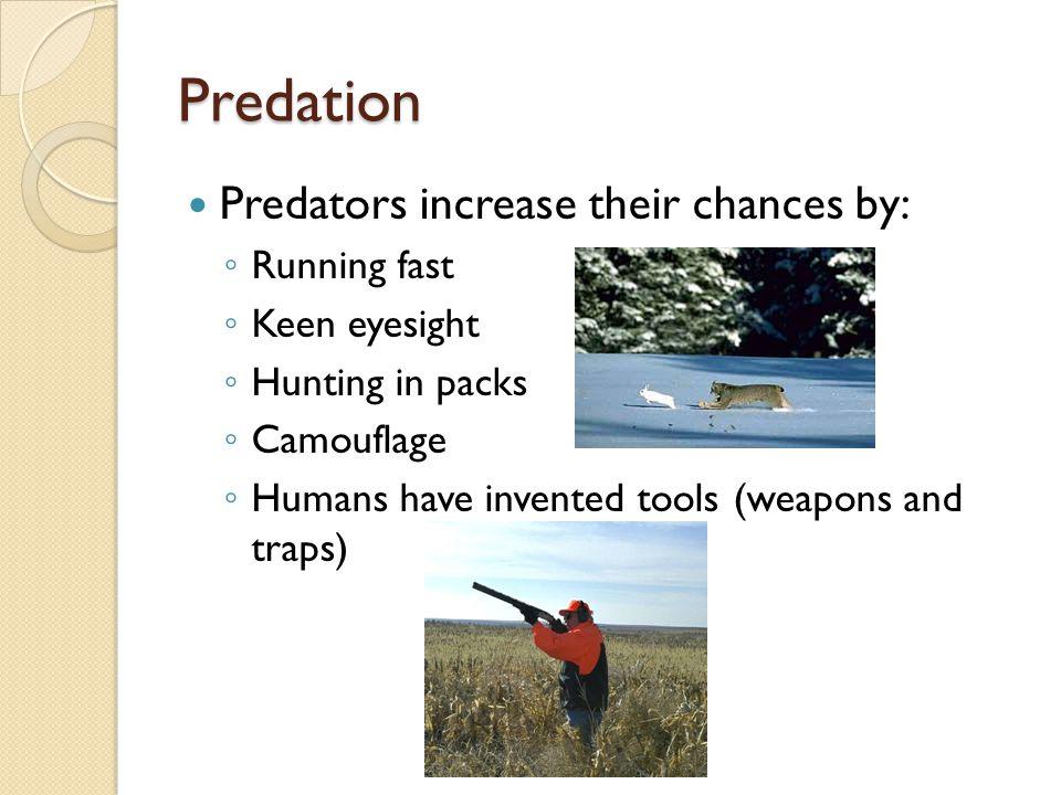 Predation Predators increase their chances by: Running fast