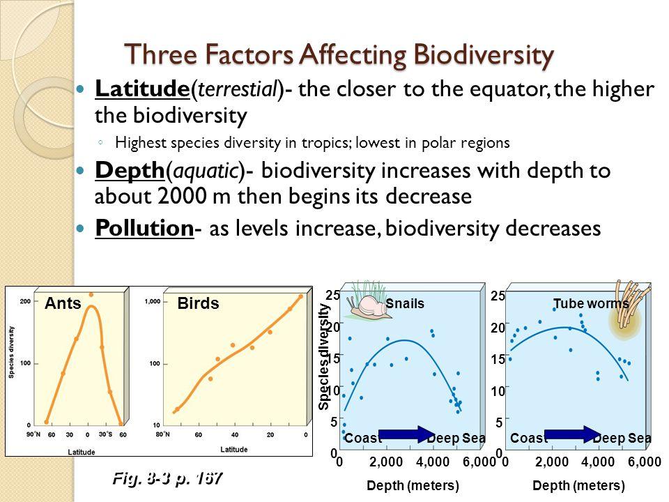 Three Factors Affecting Biodiversity