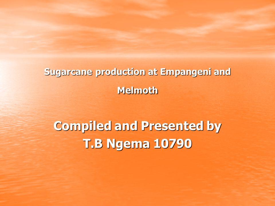 Sugarcane production at Empangeni and Melmoth