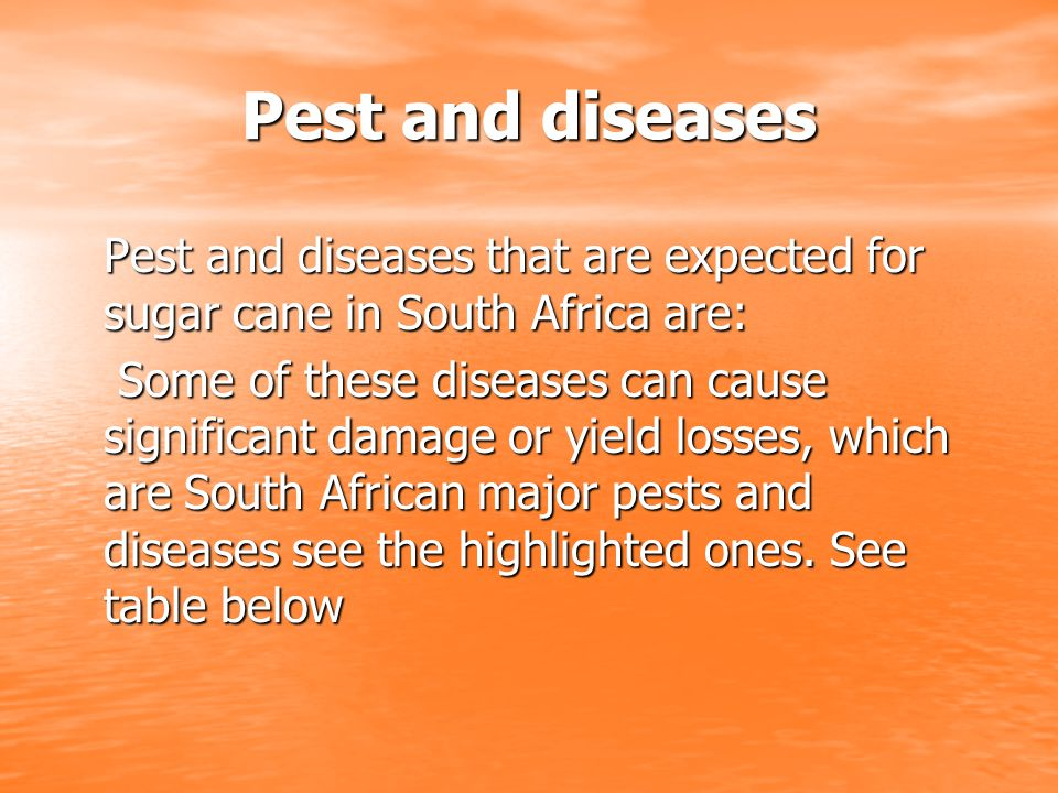 Pest and diseases Pest and diseases that are expected for sugar cane in South Africa are: