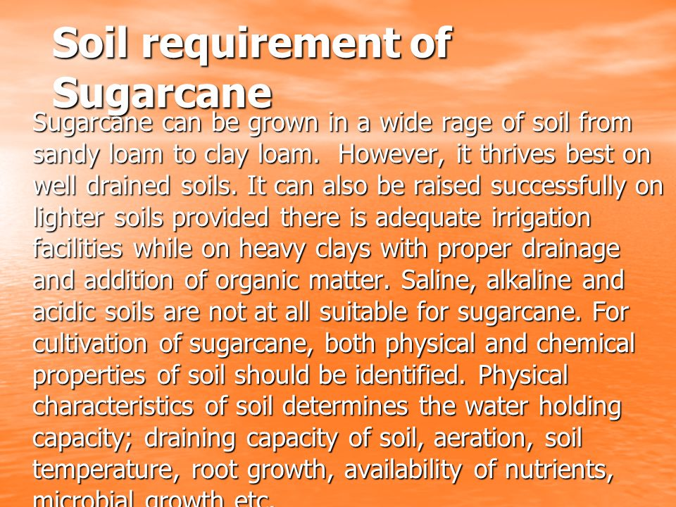 Soil requirement of Sugarcane