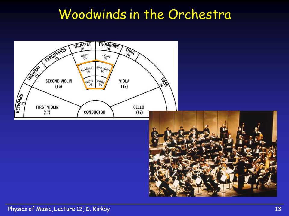 Woodwinds in the Orchestra