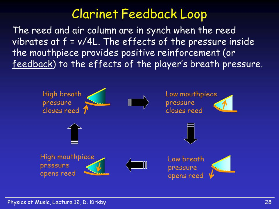 Clarinet Feedback Loop