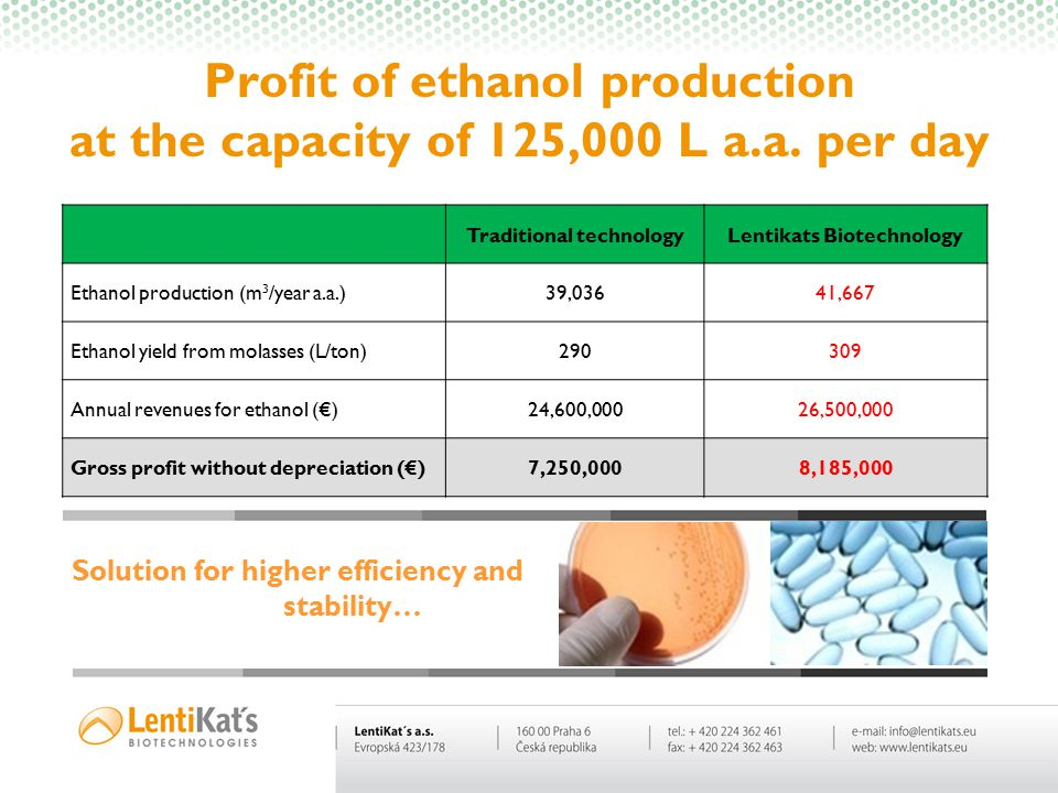 Profit of ethanol production at the capacity of 125,000 L a.a. per day