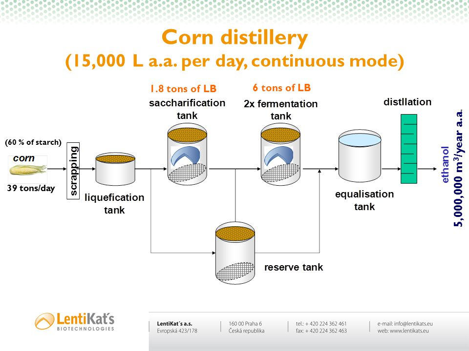 Corn distillery (15,000 L a.a. per day, continuous mode)
