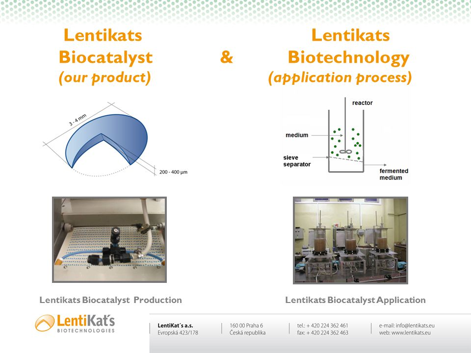 Lentikats Biocatalyst Production Lentikats Biocatalyst Application