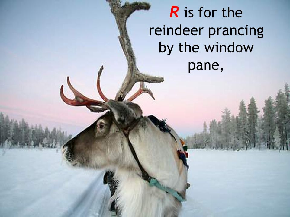 R is for the reindeer prancing by the window pane,